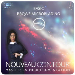 BASIC - BROWS MICROBLADING