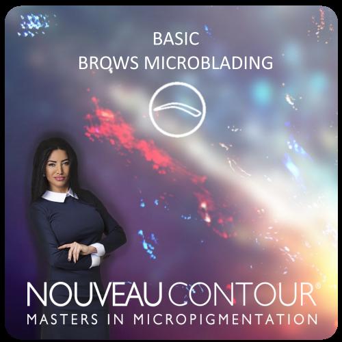 PS_Basic_Microblading